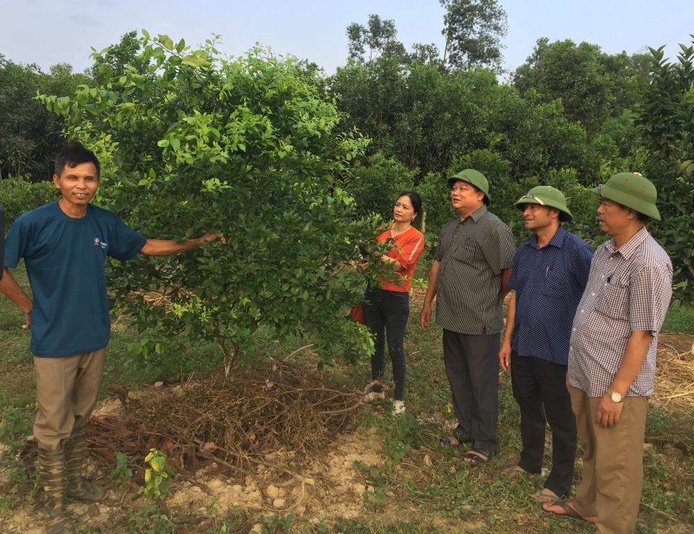 Trần Thanh Sơn Người nông dân có chí làm giàu