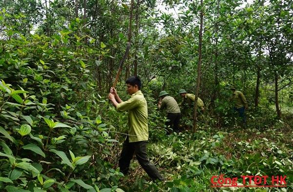 Ban Quản lý  Rừng phòng hộ Hương Khê chủ động công tác Bảo vệ rừng, Phòng cháy chữa cháy rừng trong mùa khô.