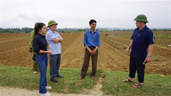 Chủ tịch UBND huyện Ngô Xuân Ninh chỉ đạo hoàn thành gieo trỉa 1.961 ha ngô Đông trước ngày 25/11.