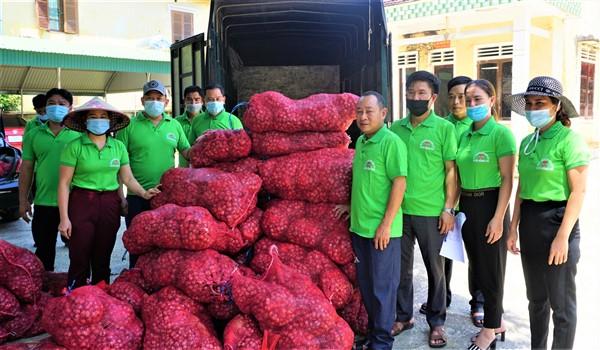 Hội Nông dân Hương Khê: Hỗ trợ tiêu thụ 2 tấn hành tím khô cho bà con nông dân tỉnh Sóc Trăng.