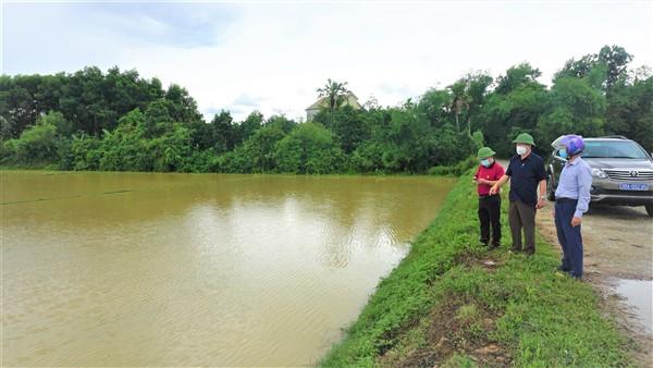 Hương Khê: 992 ha cây trồng hè thu ảnh hưởng do áp thấp nhiệt đới.