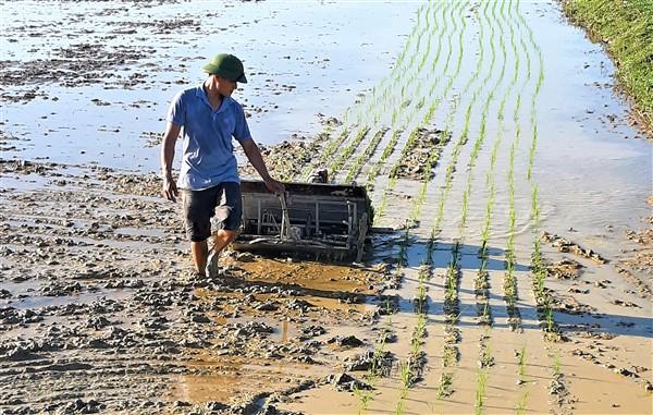 Mô hình cấy lúa bằng máy đầu tiên tại huyện Hương Khê.