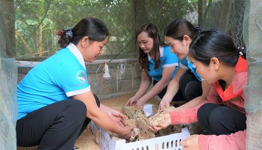 11 hộ gia đình phụ nữ nghèo xã Phúc Trạch được trao tặng gà giống sinh kế