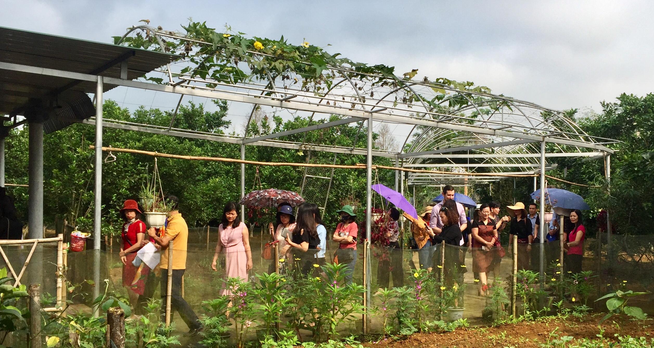 Hội LH PN tỉnh Ninh Bình và đại diện tổ chức Di cư Quốc tế IOM Tham quan trải nghiệm NTM tại Hương Khê.