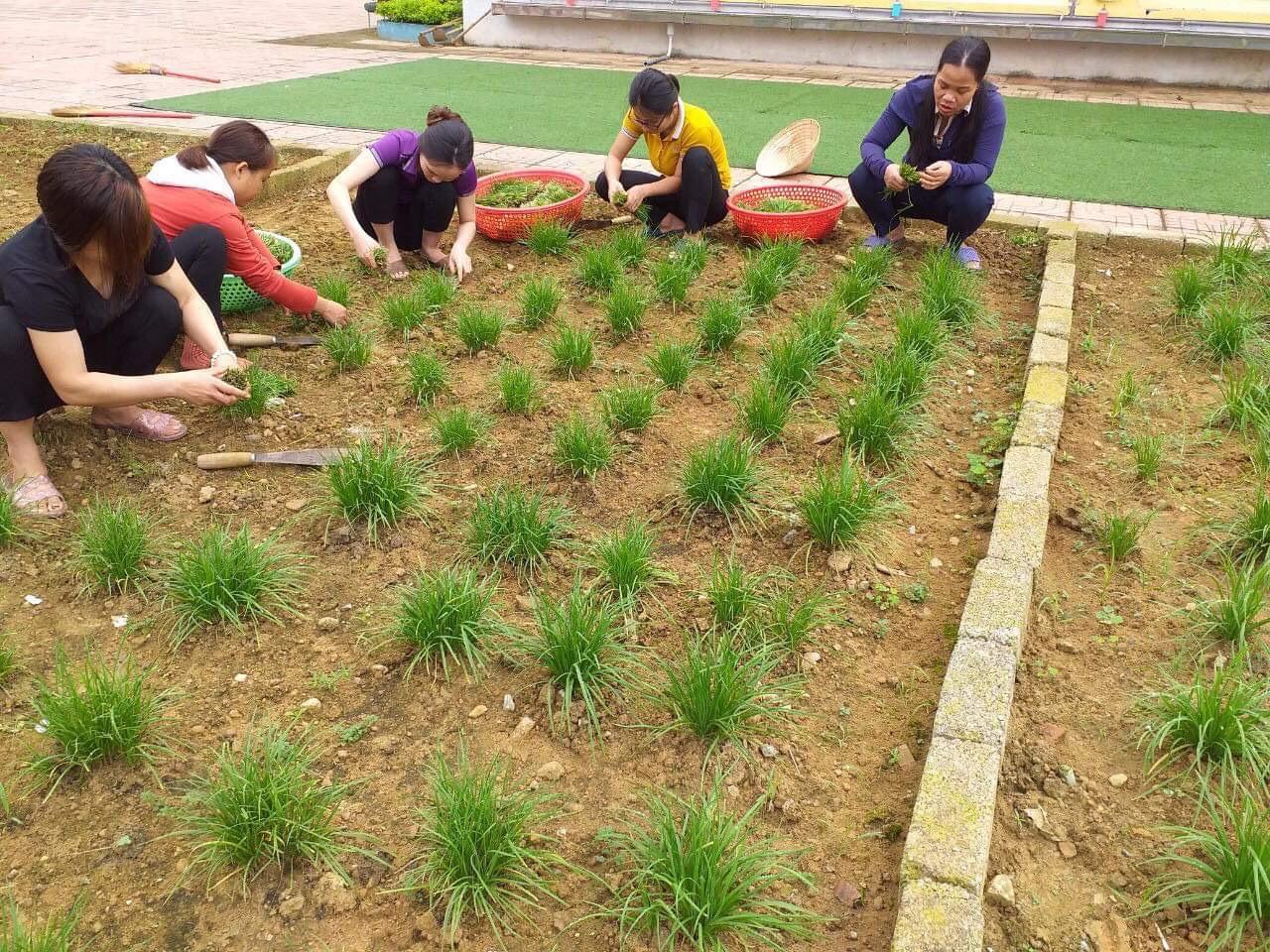 Hơn 350 kg rau, củ quả, thực phẩm quyên góp, hỗ trợ phục vụ công dân tại khu cách ly tập trung huyện