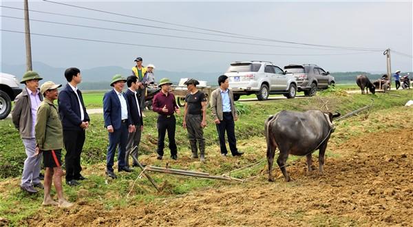 Lãnh đạo huyện Hương Khê kiểm tra sản xuất đầu Xuân tại một số địa phương