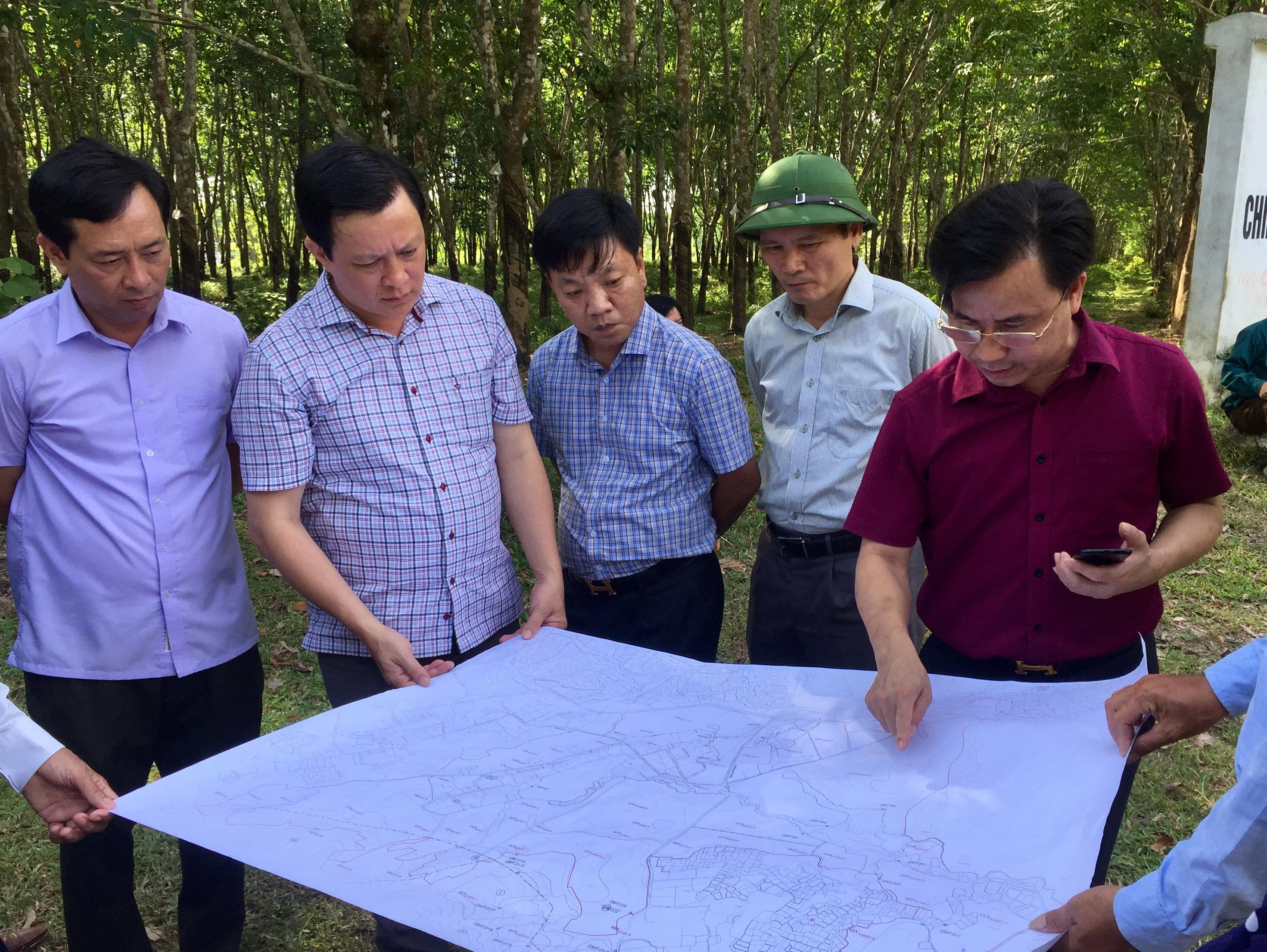 Lãnh đạo các sở, ngành liên quan và huyện Hương Khê kiểm tra thực địa địa điểm xây dựng trang trại bò sữa tại Hương Khê