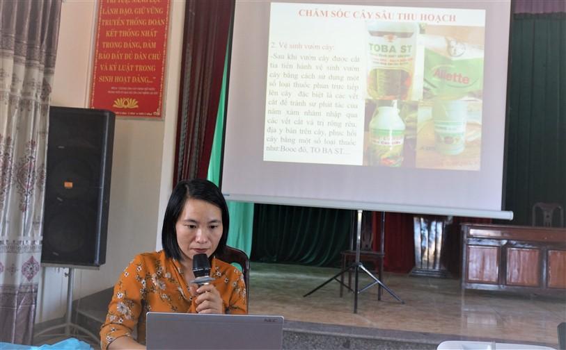 Hương Khê: tập huấn kỹ thuật trồng, chăm sóc, phòng trừ sâu bệnh trên cây trồng vụ Đông.