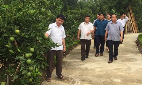 Ban chỉ đạo NTM huyện làm việc với xã Hương Đô