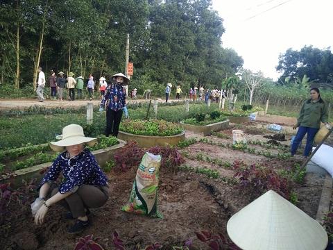 Hội LHPN huyện Hương Khê hỗ trợ 15 triệu đồng và tham gia trồng 300 m đường hoa cùng hội viên, phụ nữ tại xã Hương Giang