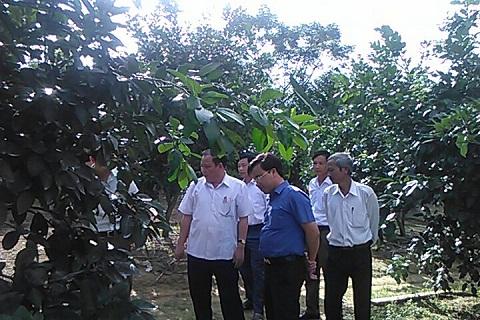 Ban chỉ đạo NTM huyện làm việc với xã Hương Liên về xây dựng nông thôn mới